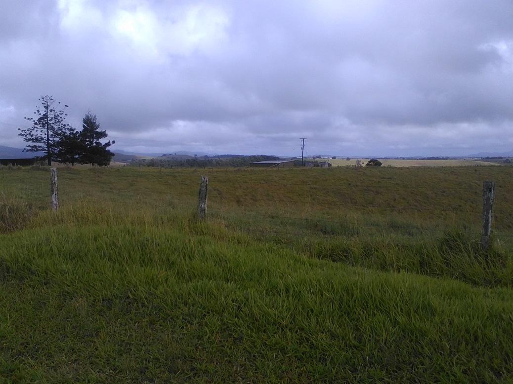 scenary-at-landry-road-2